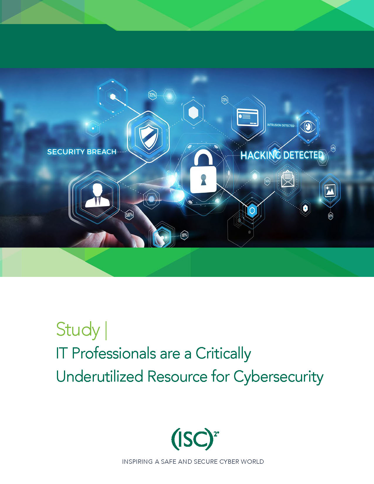 Cybersecurity: IT Professionals Underutilized